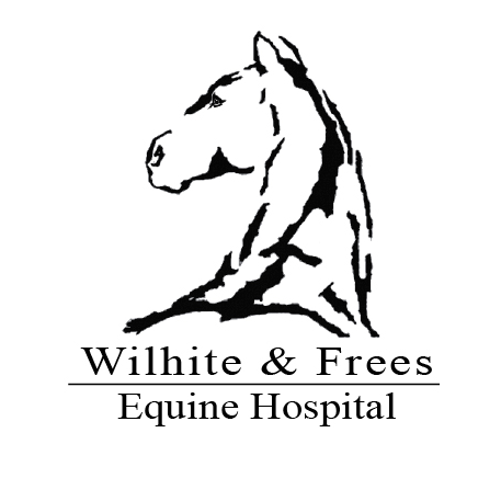 Wilhite & Frees Equine Hospital